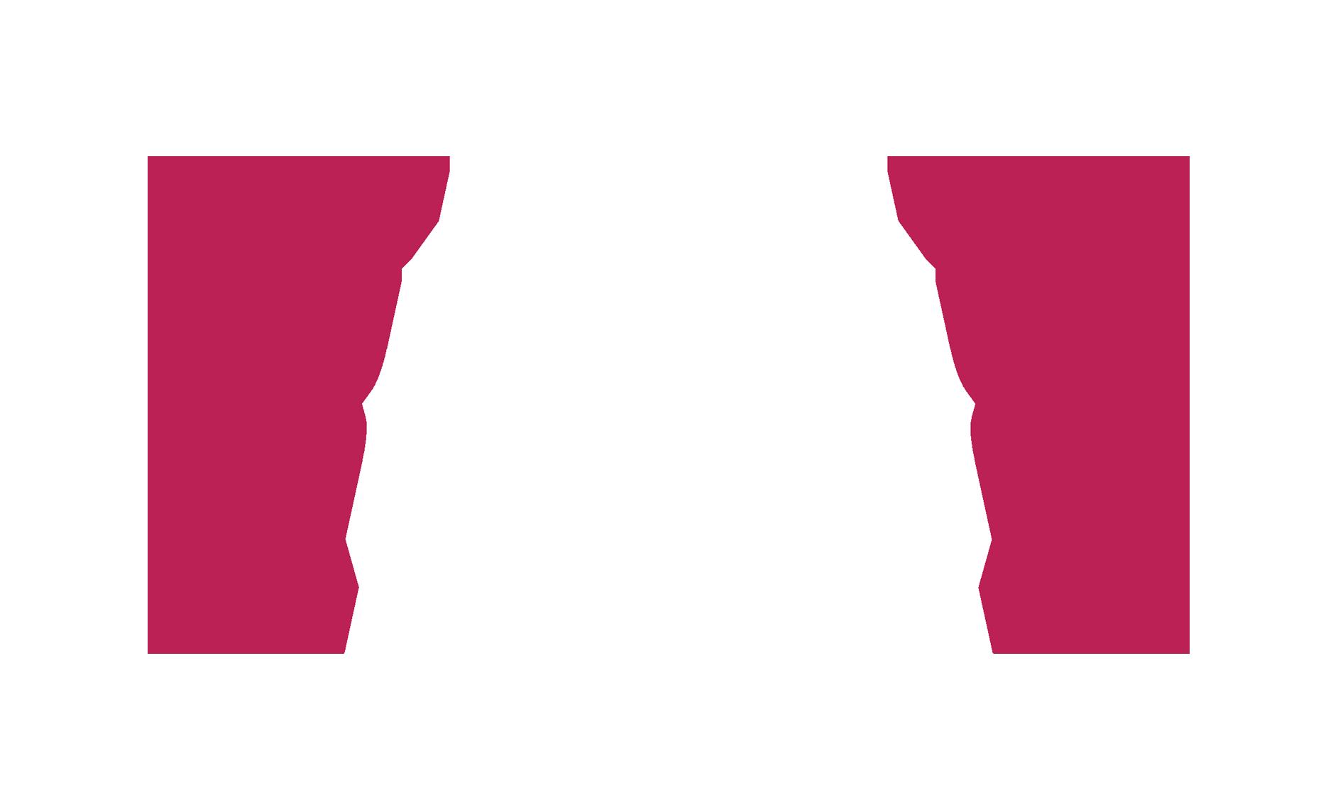 logo apitude